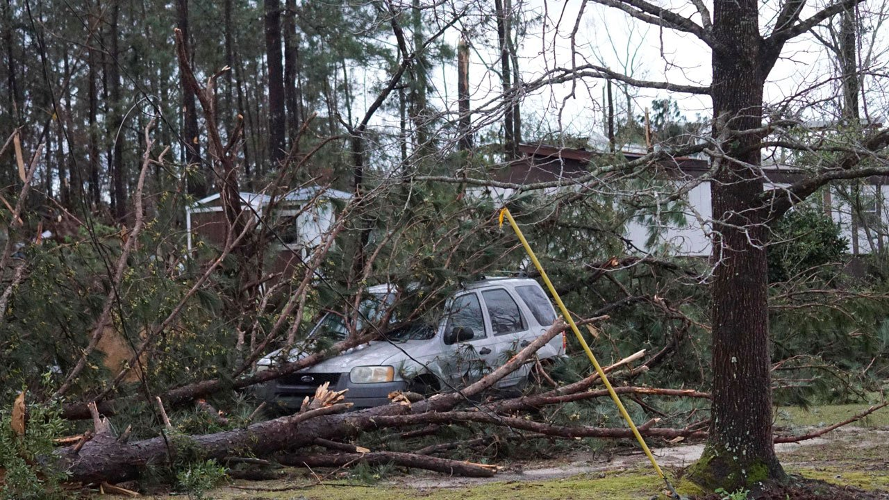 A car is held underneath downed trees along Lee Road 11 in Beauregard, Alabama, Sunday, Mar 3, 2019, after a absolute charge complement upheld by a area. (Kara Coleman Fields/Opelika-Auburn News around AP)