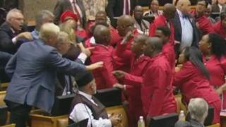 Brawl in South African council (6 Nov 2018)