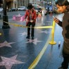 Donald Trump's Walk of Fame star to be transposed following destruction