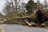 UK weather: Storm Brendan brings sleet and 80mph gusts
