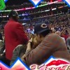 Kutcher and Kunis 'make out' for the Kiss Cam at Clippers game… as source … – Daily Mail