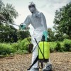 How Ebola is severe a 'Africa rising' narrative