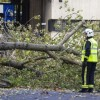 UK storms leave lady dead, homes but energy and ride disrupted